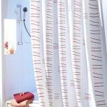 Duschvorhang – Schimmel entfernen und vorbeugen